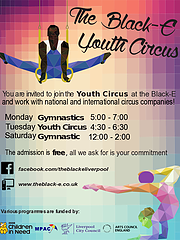 youth circus poster